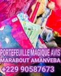 comment utiliser le portefeuille magique,les dangers du portefeuille magique,portefeuille magique,conséquence du portefeuille magique,tout savoir sur le portefeuille magique,portefeuille magique inconvénients,bedou magique,portefeuille magique temoignage